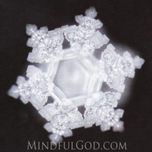 Mr. Emoto's work provided with factual evidence, that human vibrational energy, thoughts, words, ideas and music, affect the molecular structure of water.