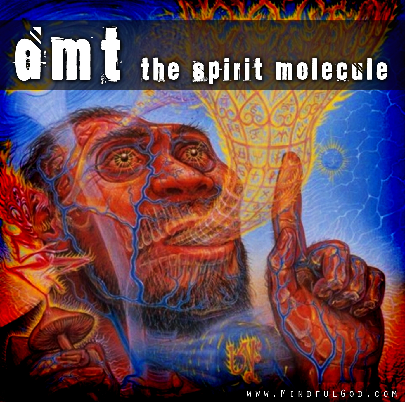 dmt the spirit molecule Dmt: the spirit molecule 1,048,360 likes 30,733 talking about this dmt: the spirit molecule is available for viewing: download the movie on itunes.