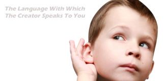 The Language With Which The Creator Speaks To You